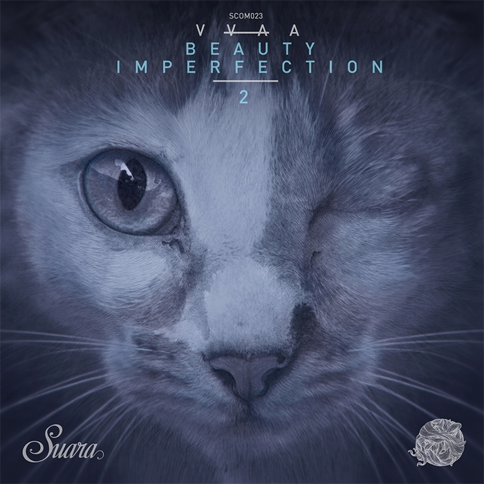 VARIOUS - Beauty Imperfection 2