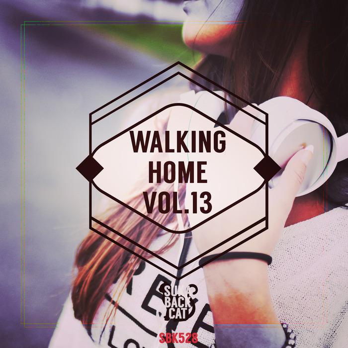 VARIOUS - Walking Home Vol 13
