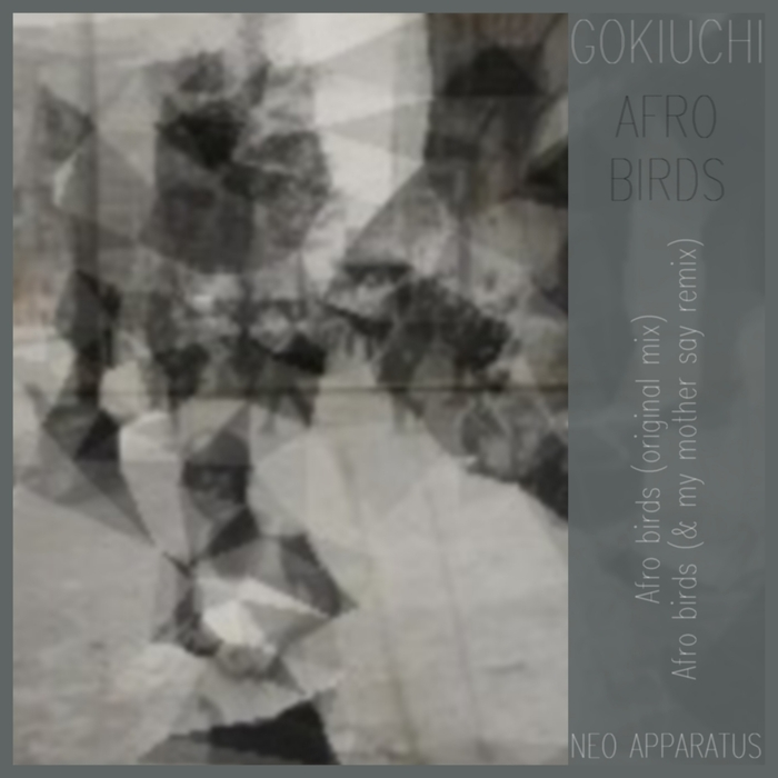 GOKIUCHI - Afro Birds