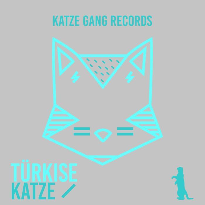 VARIOUS - Turkise Katze