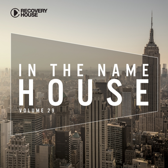 VARIOUS - In The Name Of House #29