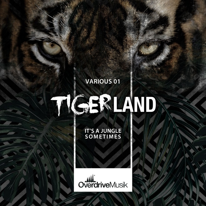 VARIOUS - Tigerland 01
