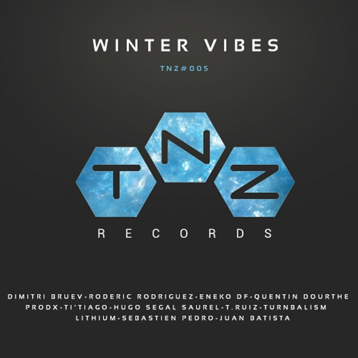 VARIOUS - Winter Vibes