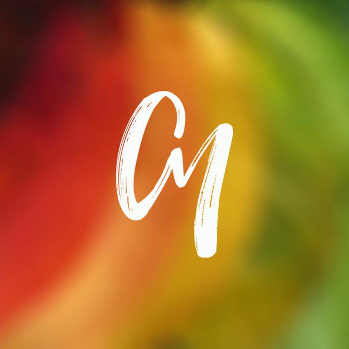 DEEP SOUND EFFECT/CAMILLA VOICE/TORICOS/BLUEAZURE/CHERRY/LUDWIX - Night Shine