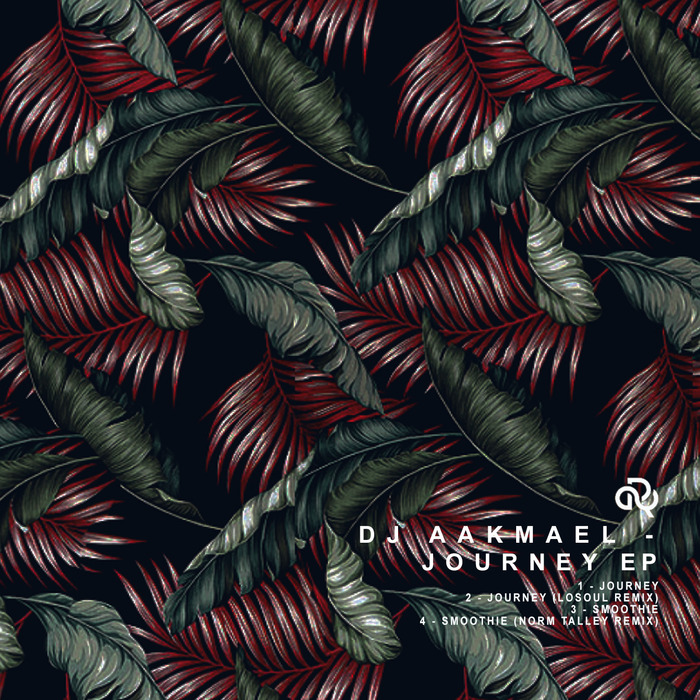 DJ AAKMAEL - Journey EP