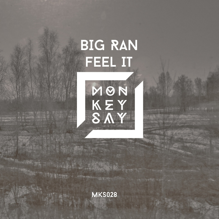 BIG RAN - Feel It
