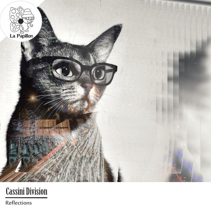 CASSINI DIVISION - Reflections