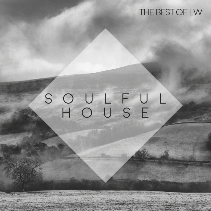 VARIOUS - Best Of LW: Soulful House