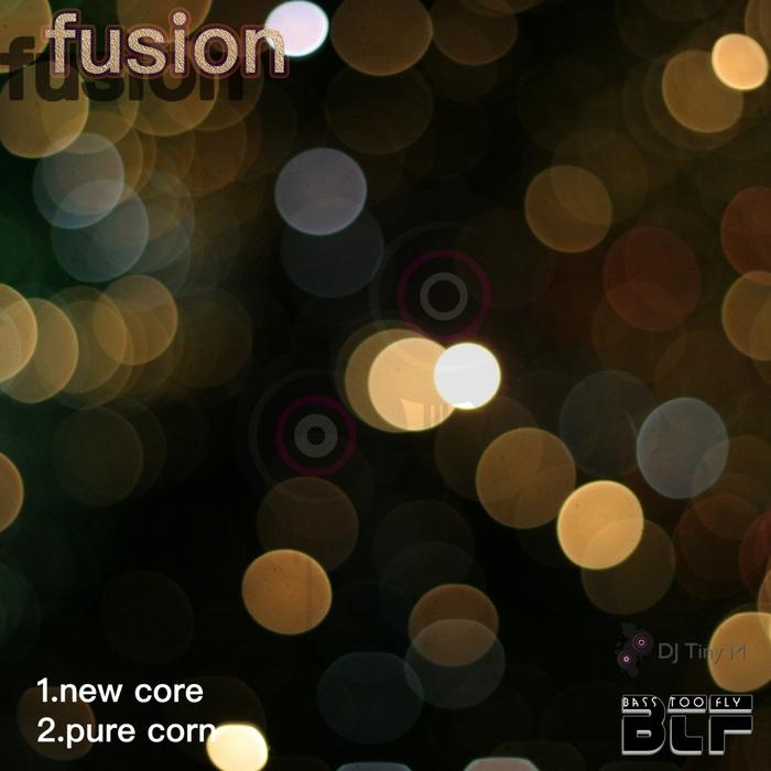 DJ TINY M - Fusion