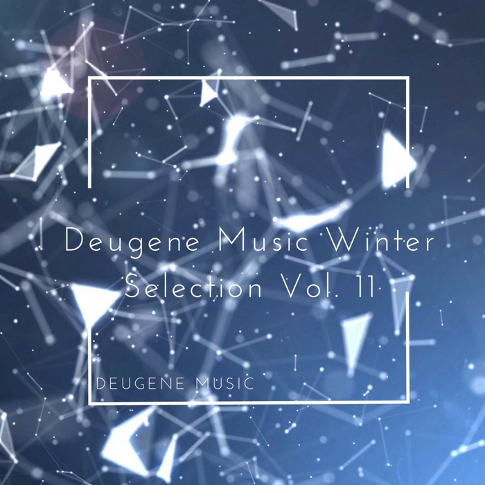 VARIOUS - Deugene Music Winter Selection Vol 11