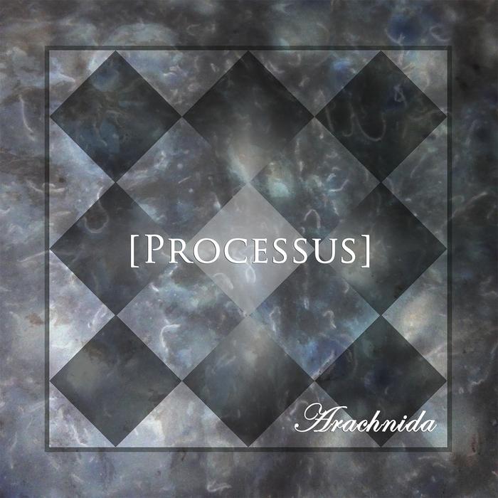 ARACHNIDA - Processus