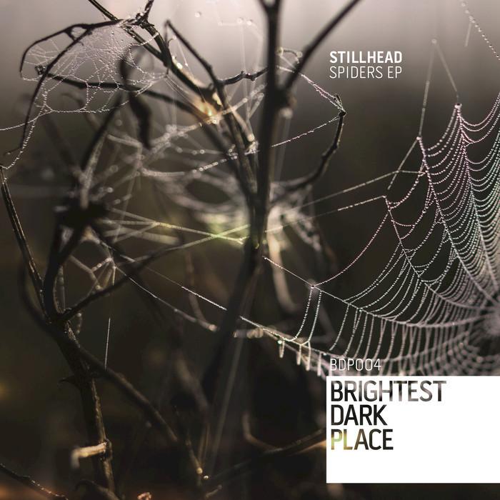 STILLHEAD - Spiders EP