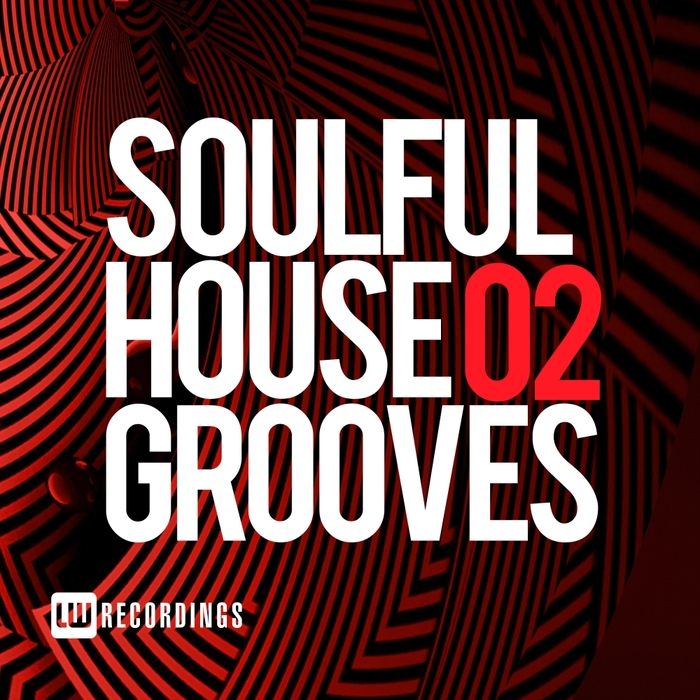 VARIOUS - Soulful House Grooves Vol 02
