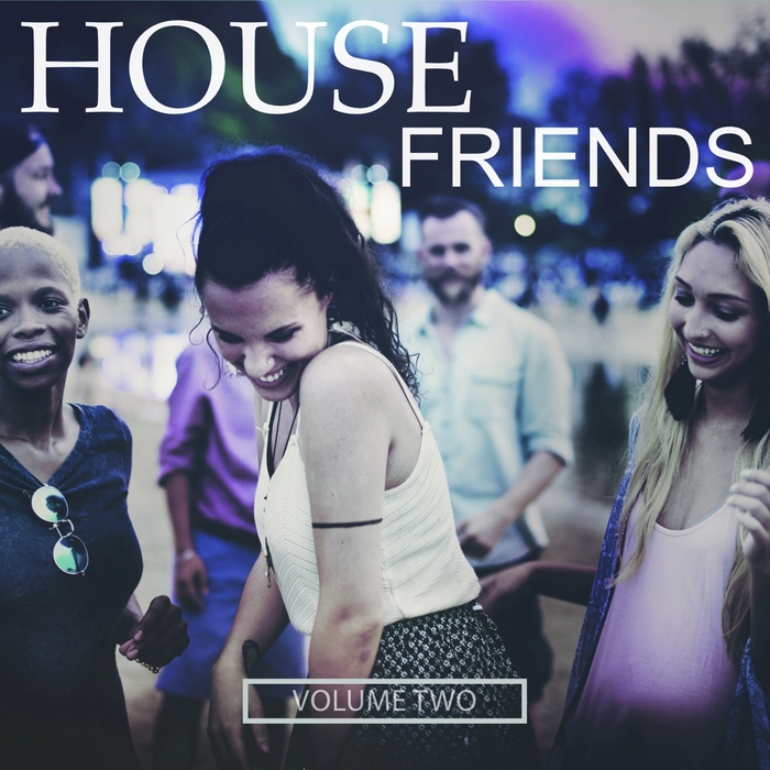 VARIOUS - House Friends Vol 2 (House For You & Your Best Friends)