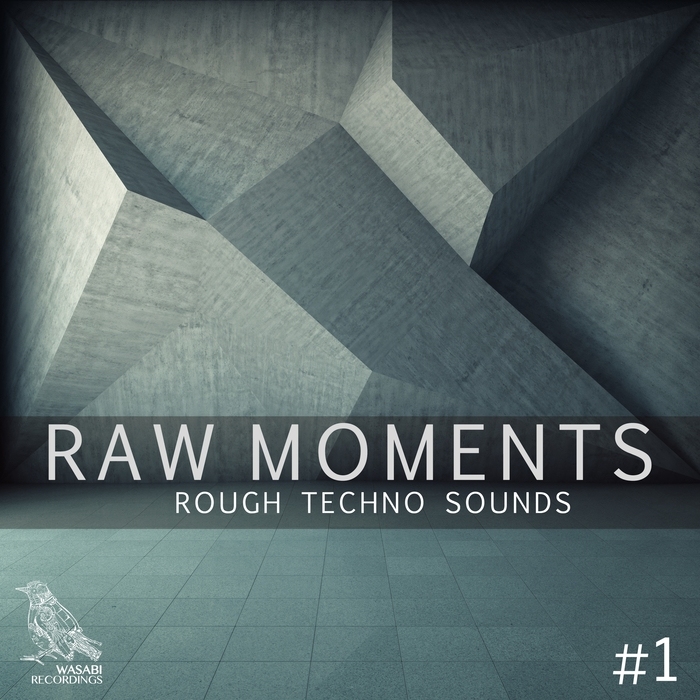 VARIOUS - Raw Moments Vol 1 - Rough Techno Sounds