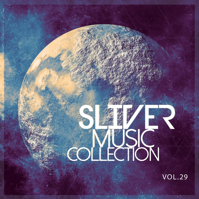 VARIOUS - Sliver Music Collection Vol 29