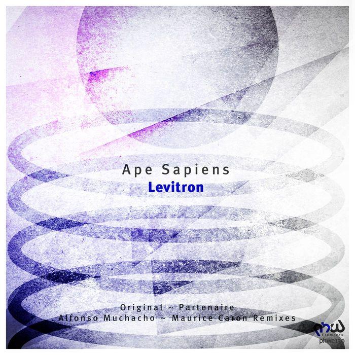 APE SAPIENS - Levitron