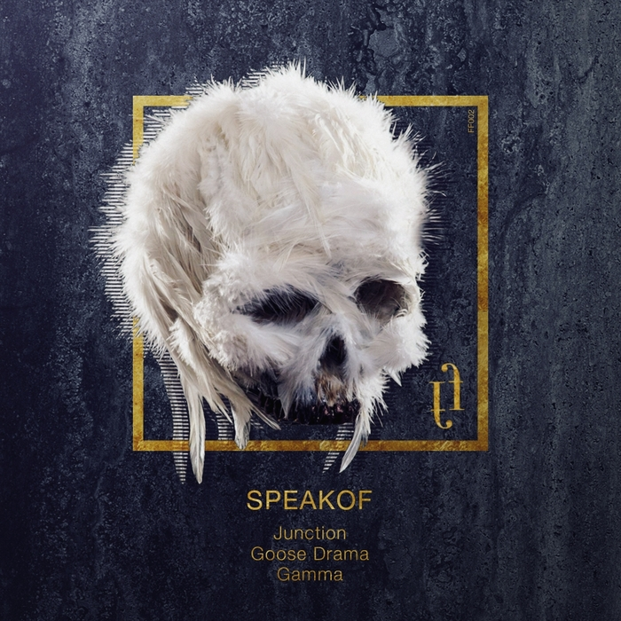 SPEAKOF - Gamma