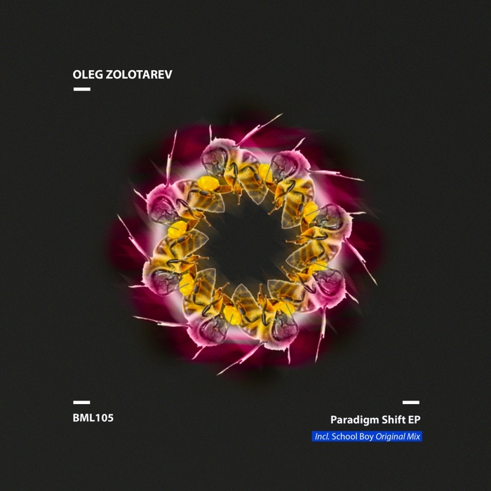 OLEG ZOLOTAREV - Paradigm Shift