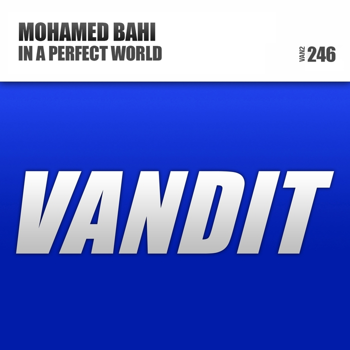 MOHAMED BAHI - In A Perfect World