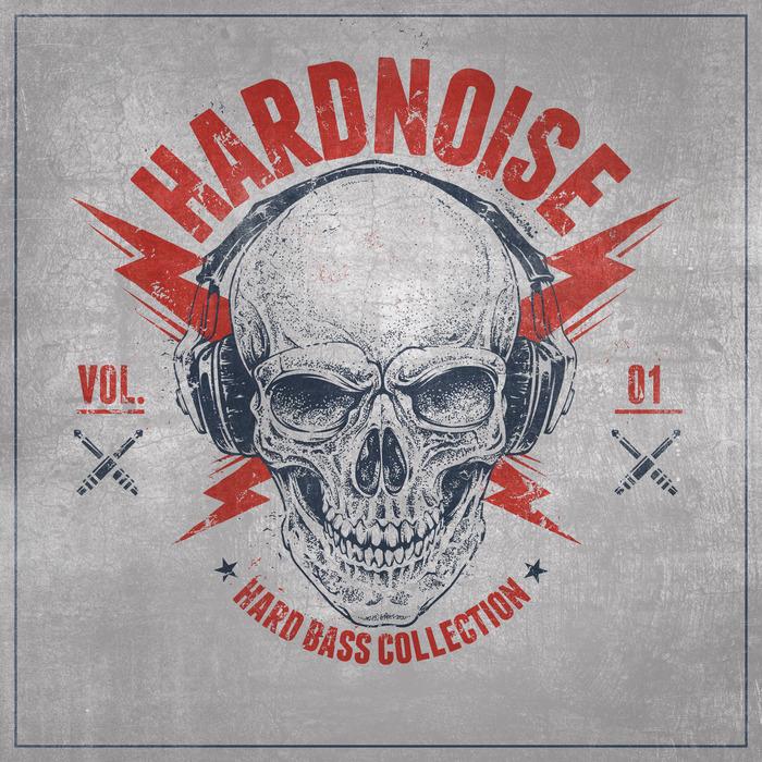 VARIOUS - Hardnoise Vol 1