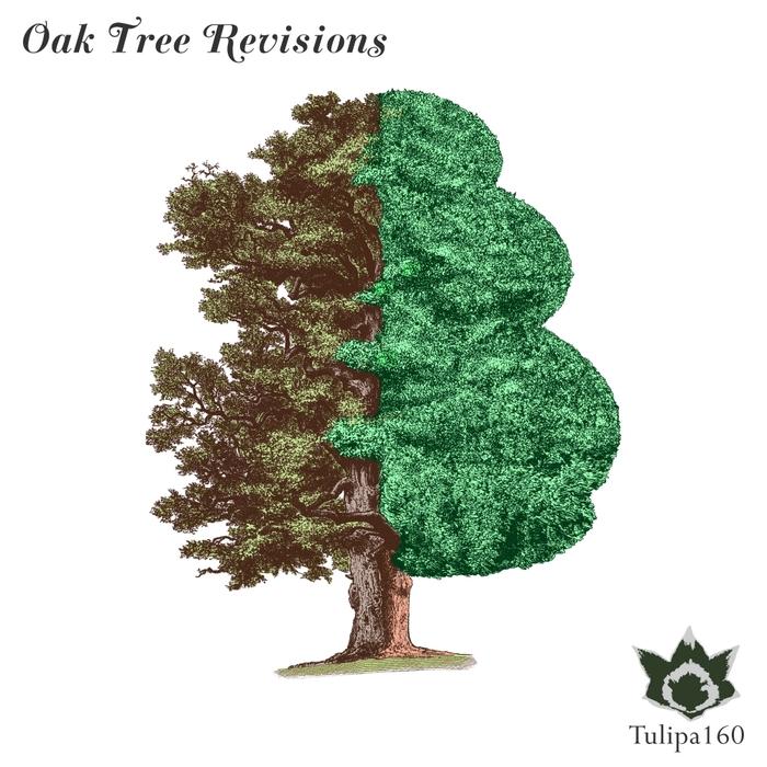 VARIOUS - Oak Tree Revisions