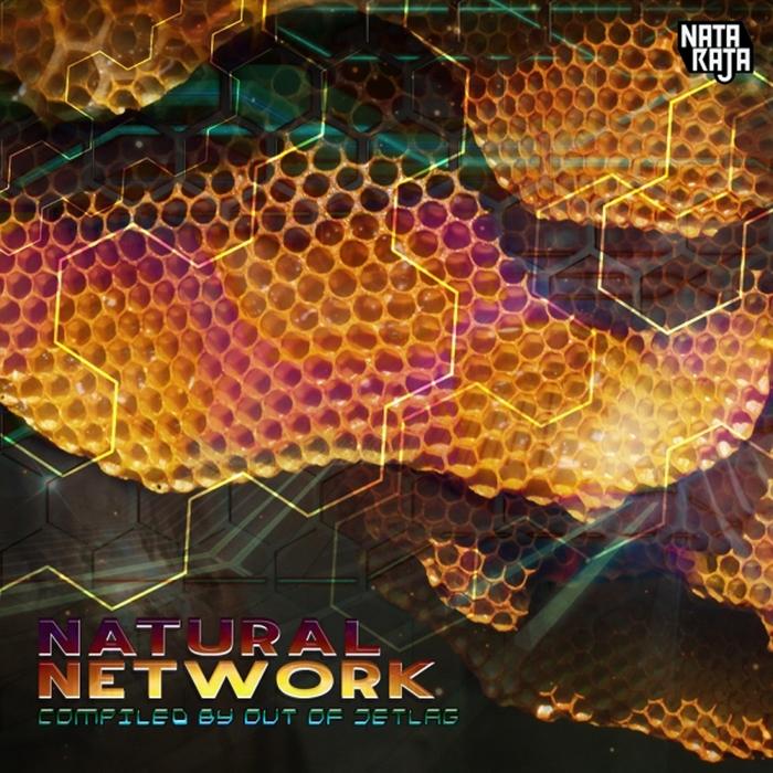 VARIOUS - Natural Network
