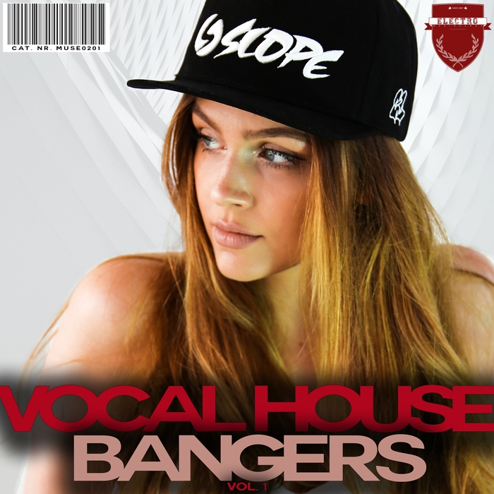 VARIOUS - Vocal House Bangers Vol 1