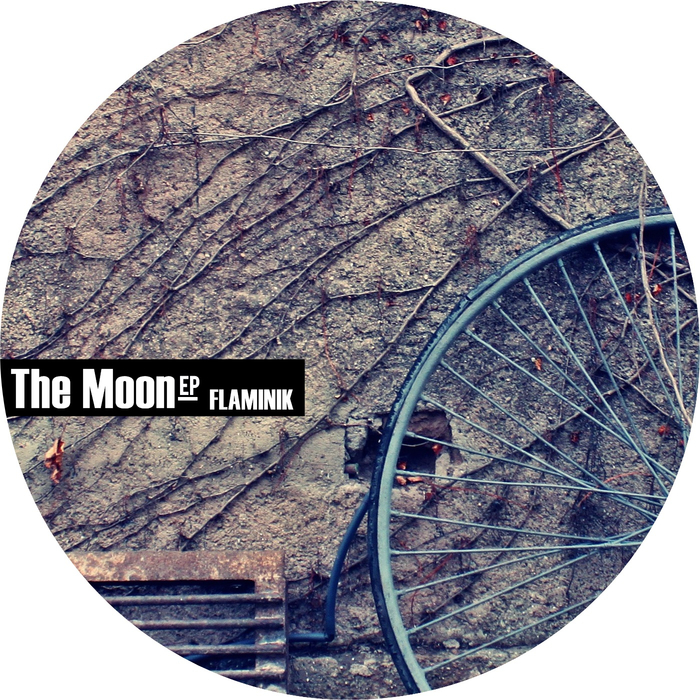 FLAMINIK - The Moon