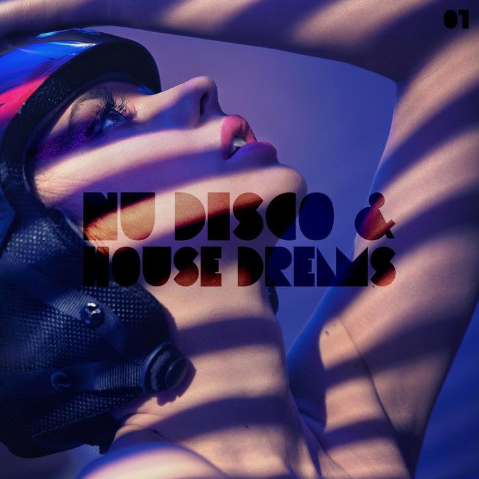 VARIOUS - Nu Disco & House Dreams Vol 1