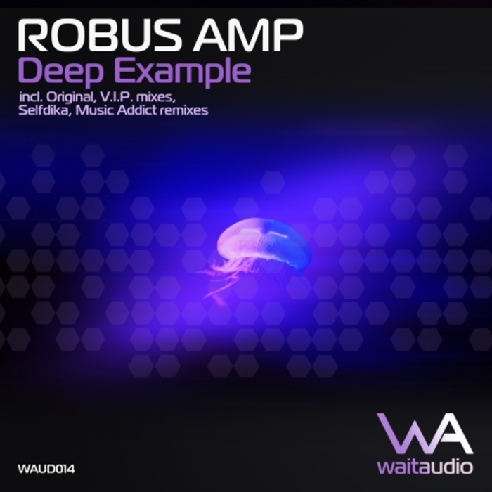 ROBUS AMP/SELFDIKA/MUSIC ADDICT - Robus Amp: Deep Example