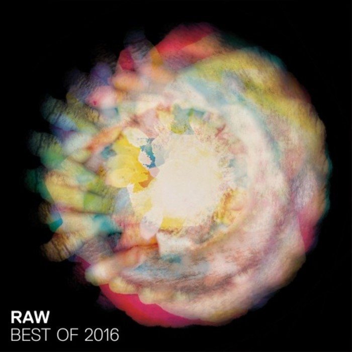 VARIOUS - Best Of Raw 2016