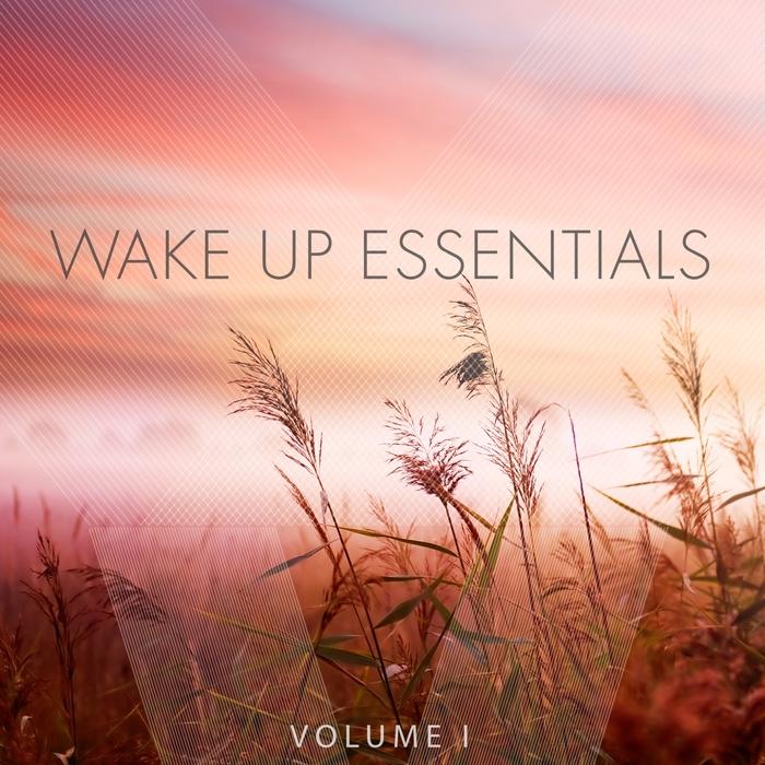 VARIOUS - Wake Up Essentials Vol 1 (Wonderful Get Up Tunes)