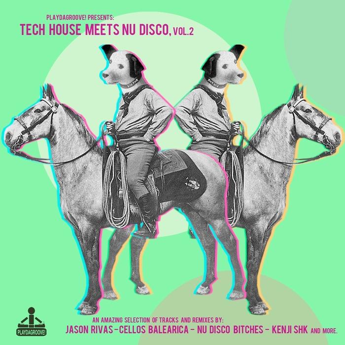 VARIOUS - Tech House Meets Nu Disco Vol 2