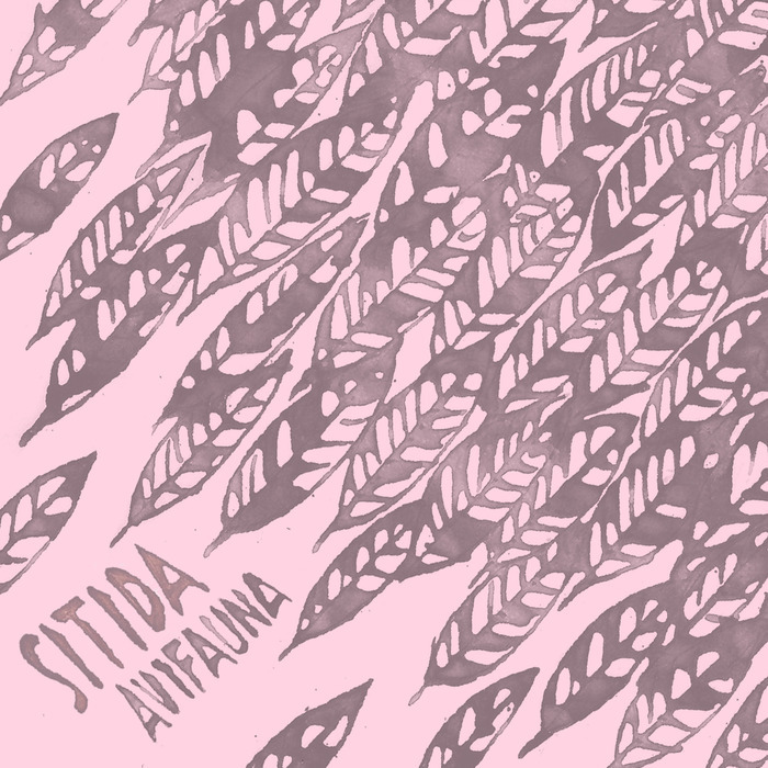 SITIDA - Avifauna