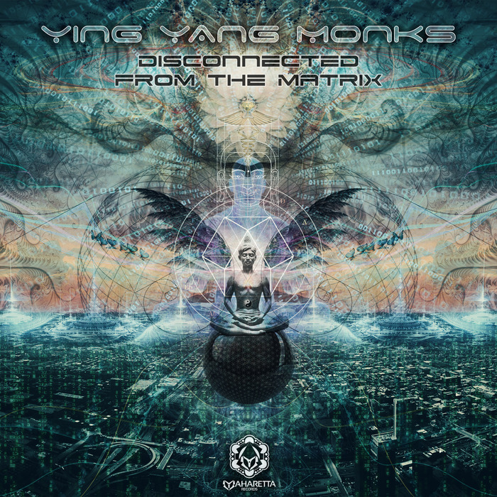 YING YANG MONKS - Disconnected From The Matrix