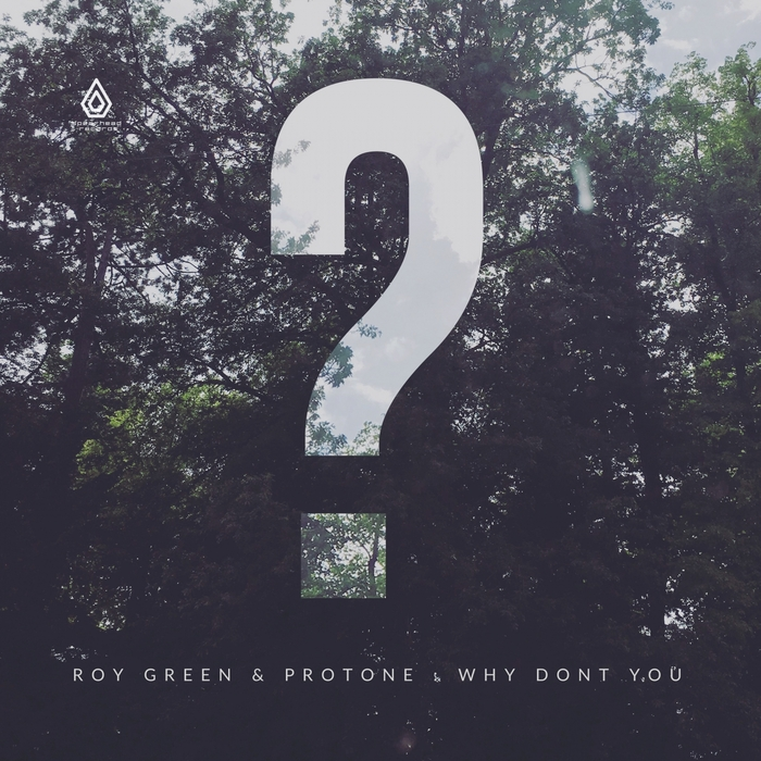ROYGREEN/PROTONE - Why Don't You EP