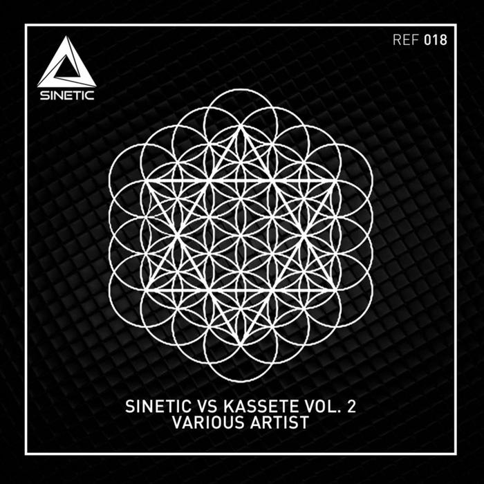 VARIOUS - Kassete VS Sinetic Vol 2