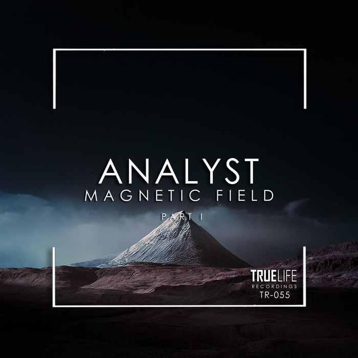 ANALYST - Magnetic Field