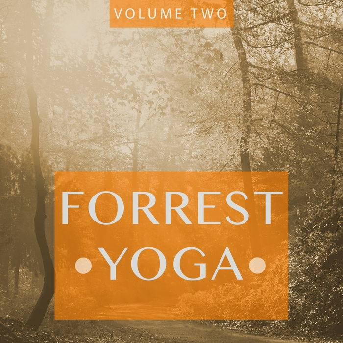 VARIOUS - Forrest Yoga Vol 2 (Finest In Smooth Electronic Music)