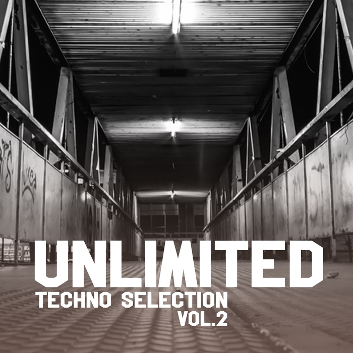 VARIOUS - Unlimited Techno Selection Vol 2