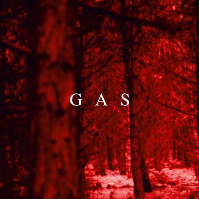 GAS (WOLFGANG VOIGT) - Zauberberg
