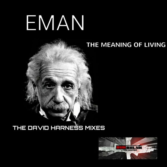 EMAN - The Meaning Of Living (David Harness Mixes)