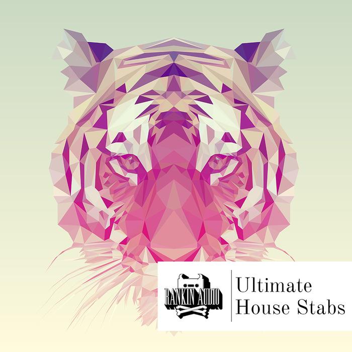 RANKIN AUDIO - Ultimate House Stabs (Sample Pack WAV)