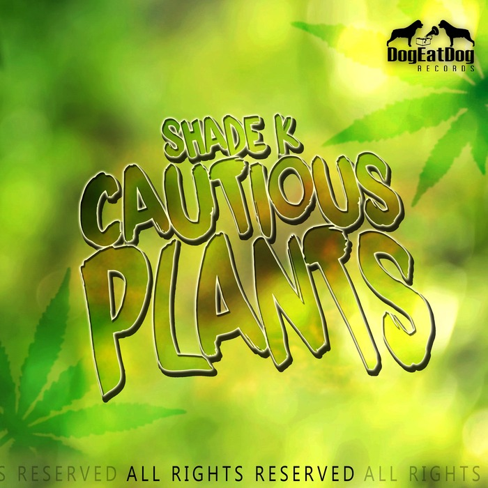 SHADE K - Cautious Plants