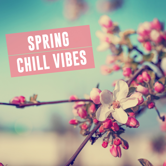 VARIOUS - Spring Chill Vibes
