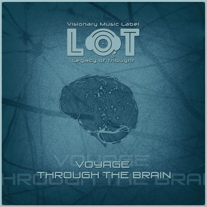 VARIOUS - Voyage Through The Brain