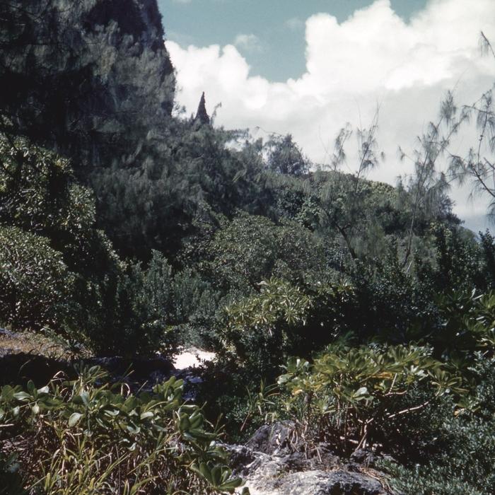 CELER - Alcoves
