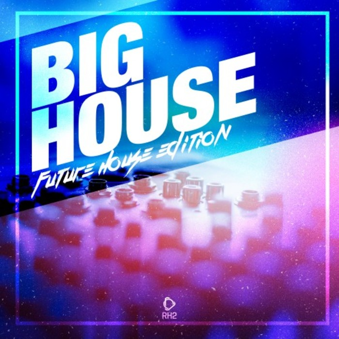 VARIOUS - Big House: Future House Edition