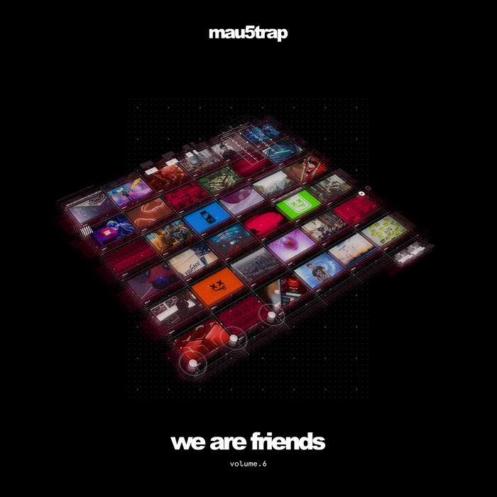 VARIOUS - We Are Friends Vol 6